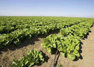 Certified Crop Advisor study resources (Northeast region)